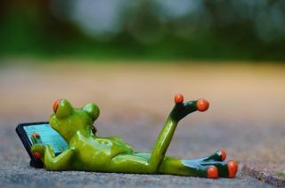 frog-computer 2