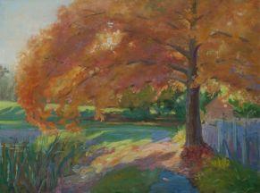 Debra Yeger, A Walk in the Park